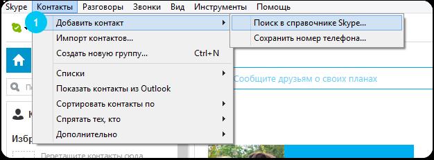 Skype Kontakte